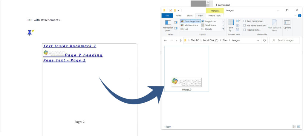 Extract images from document attached in PDF document
